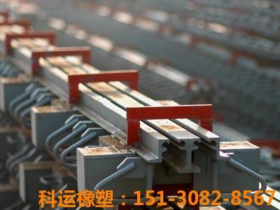科运橡塑d80型桥梁伸缩缝装置生产研发基地4
