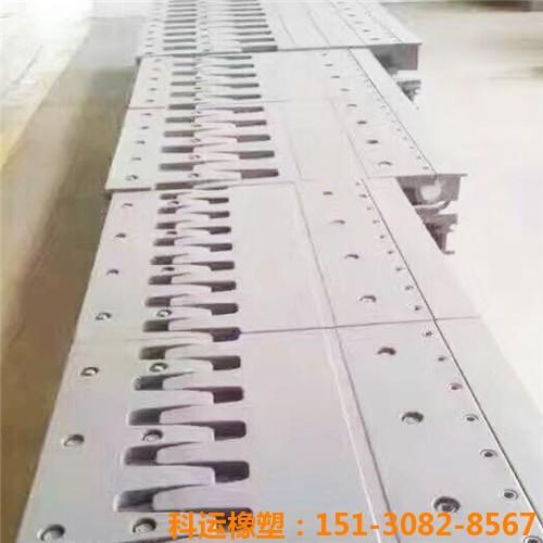 衡水科运橡塑D80型桥梁伸缩缝装置生产研发基地2