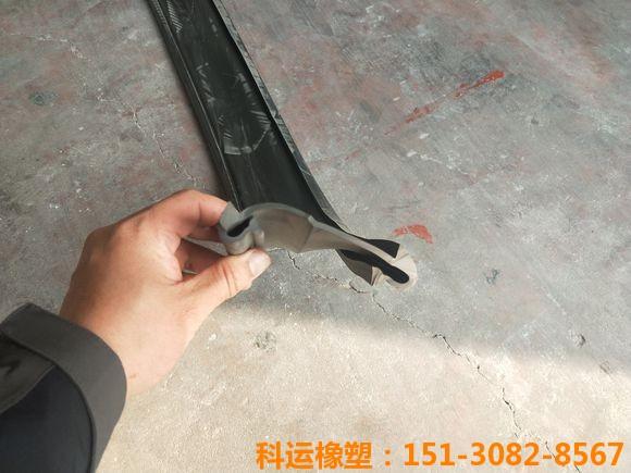 桥梁伸缩缝胶条 桥梁伸缩缝橡胶密封条4