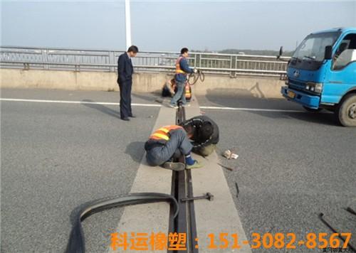 科运橡塑包头黄河大桥桥梁伸缩缝装置维修更换简介4
