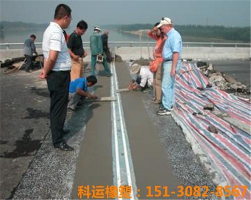 科运橡塑包头黄河大桥桥梁伸缩缝装置维修更换简介3