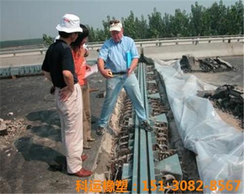 科运橡塑包头黄河大桥桥梁伸缩缝装置维修更换简介1