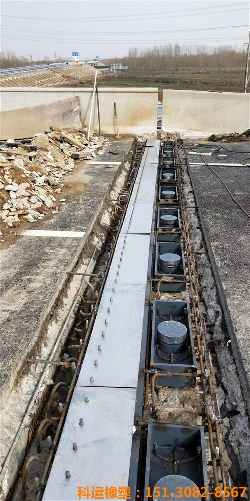科运橡塑各种型钢伸缩缝 梳齿板桥梁伸缩缝型号汇总7