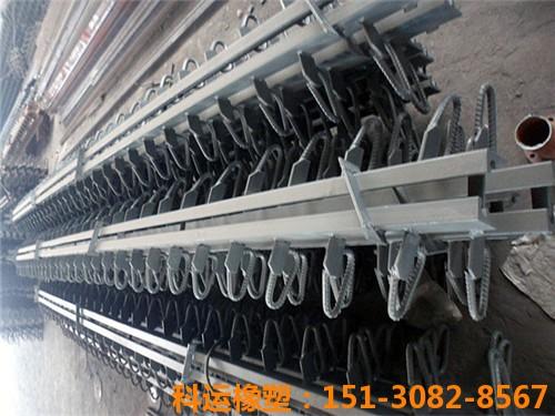 D80桥梁伸缩缝 模数式桥梁伸缩缝160型伸缩缝4