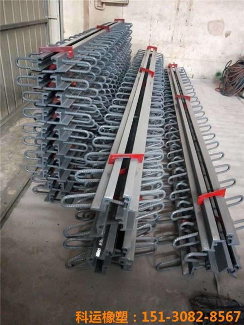 D80桥梁伸缩缝 模数式桥梁伸缩缝160型伸缩缝2