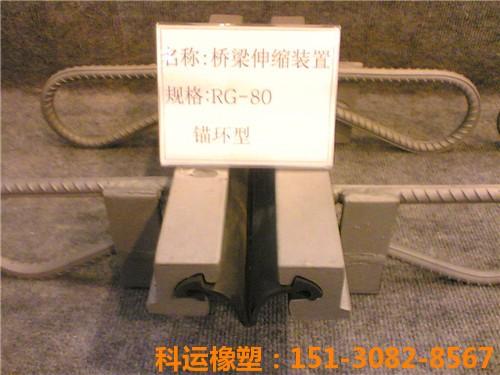 科运橡塑D80桥梁伸缩缝装置-expansion joint1