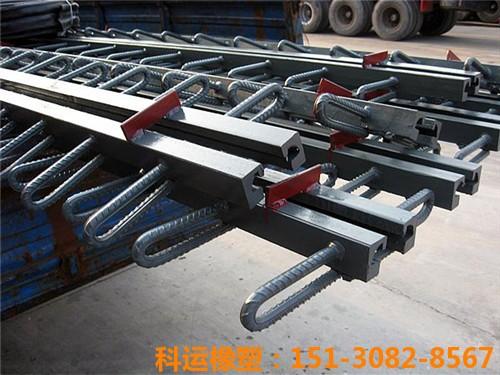 科运橡塑各种型钢伸缩缝 梳齿板桥梁伸缩缝型号汇总4