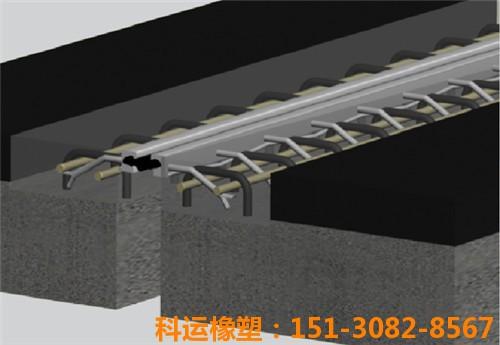 桥梁伸缩缝胶条安装1