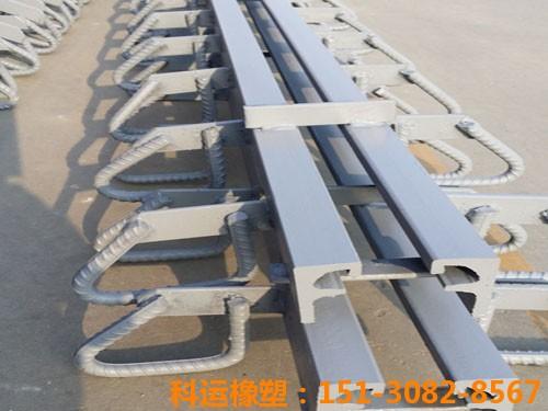 TST无缝桥梁伸缩缝装置 科运良品公路桥梁伸缩缝装置解读4