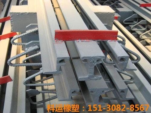 TST无缝桥梁伸缩缝装置 科运良品公路桥梁伸缩缝装置解读8